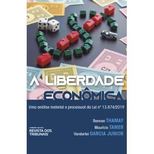 LIBERDADE ECONOMICA, A - UMA ANALISE MATERIAL E PROCESSUAL DA LEI 13.874/2019